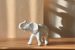 SS000311-Elefante Danilo